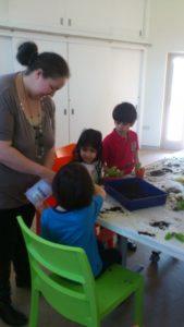 Volunteering - Website Pictures 33